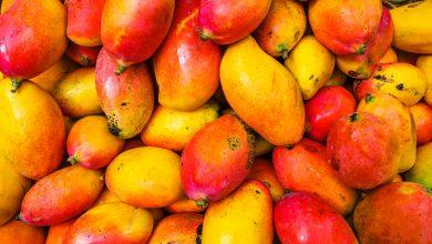 Photo of Mangohouten meubels onderhouden