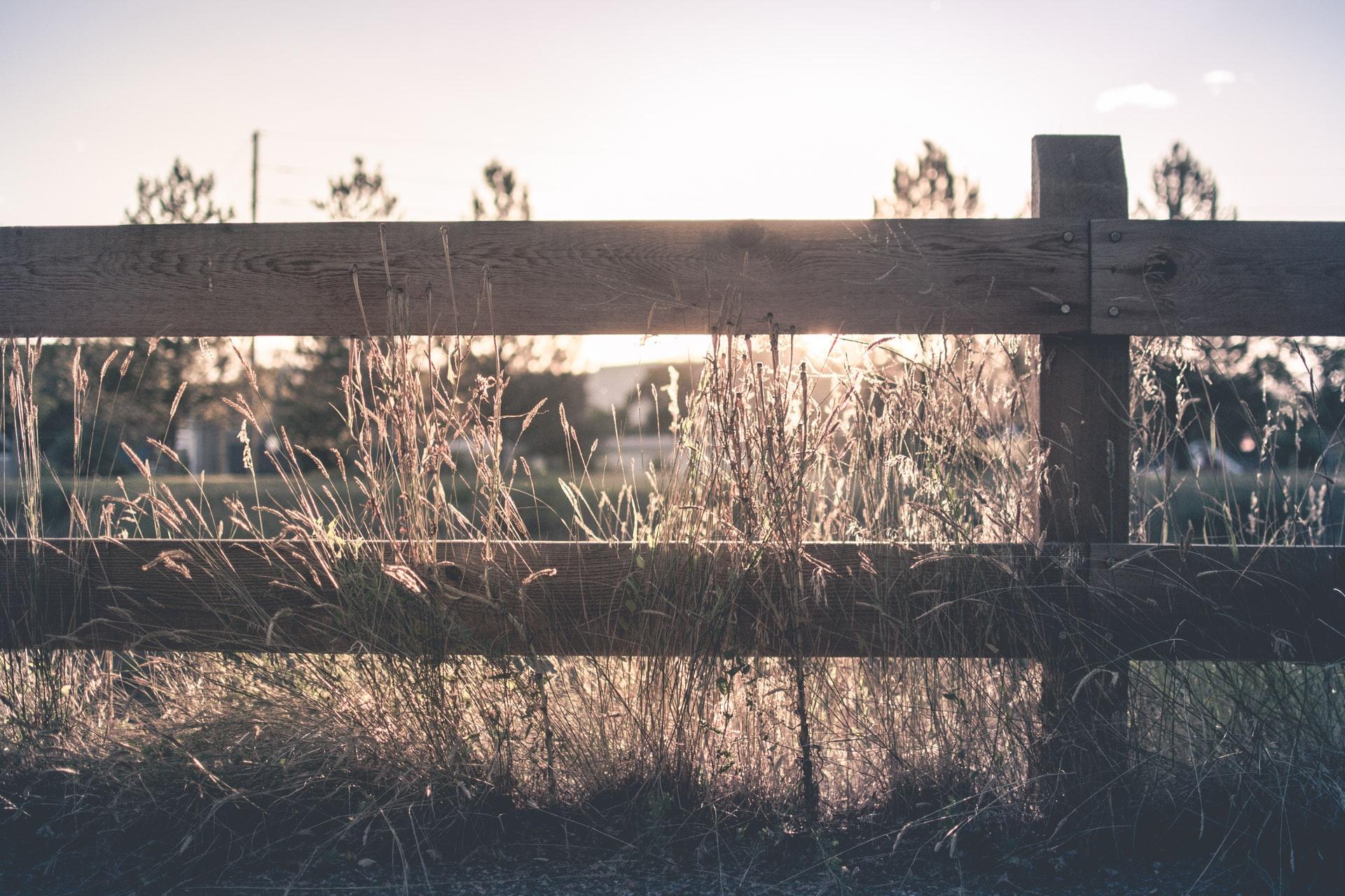 tuin afbakenen met een hek