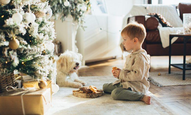 Photo of Kies voor een unieke spiraal kerstboom